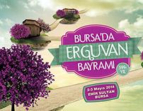 Bursa'da Erguvan Bayramı