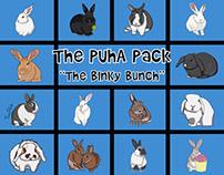 The Binky Bunch