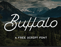 Buffalo: Free monoline script font