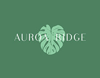 Auroa Ridge Brand Identity