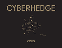 CRHG | Explainer video & Identity
