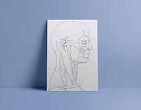 Illustrasjoner håndtegnet