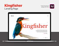 Kingfisher Landing Page | Free Download | Adobe XD
