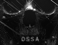 OSSA jewelry stills