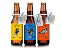 BIRDS | Packaging | Illustration