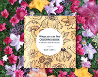 Things You Can Find Coloring Book