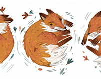 The fox story: Tumble,tumble,tumble