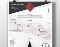 my flat cv infographic resume 2014 on behance