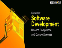 Software Development Balance Compliance & Competition
