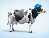 Tetrapak - Cow