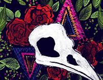 Cranio Corvo