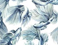Betta fish pattern