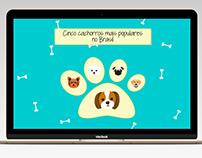 Infográfico: Cinco cachorros mais populares no Brasil