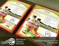 Brochure Designers - Flyer Design