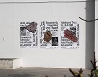 Veintinueve Trece, Visual Arts Festival of Lanzarote