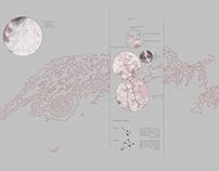 SIG+MAPPING_Distancia social_2020_01