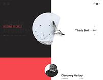 Agency & Portfolio Creative PSD Template