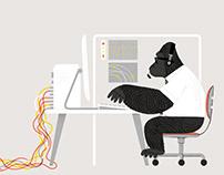 Nick Radford - Gorilla Gorilla
