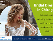 Bridal Gowns in Chicago | 8479838616 | dantelabridalcou