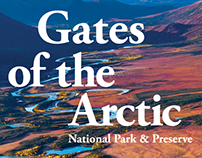 Gates of the Arctic Branding Guideline Book Samples