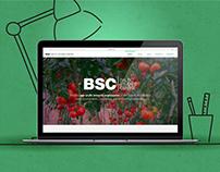 BALTIC SUDIES CENTRE website design