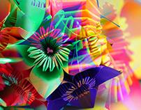 Origami 02 - Ensaio Fotográfico