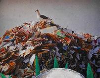 Trash Marauder