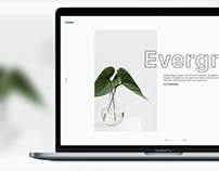 Outline — Portfolio XD template