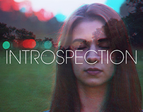 ANAGLYPH INTROSPECTION