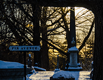 Winter at Cambridge - Mount Aububurn Cemetery