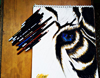Eye of a Tiger | Combo of Charcoal & Color Drawing