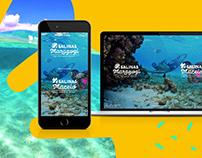 Salinas website redesign