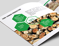 Plywood firm Brochure