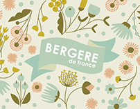 Begere De France - Campaigning Project