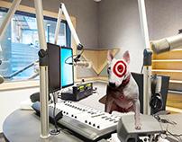 Target Radio Spots
