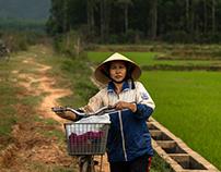 Vietnam - Phong Nha - N.4