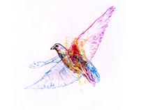 //RGB-CMYK// SYNESTHESIA