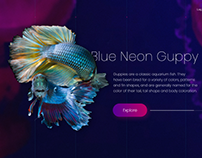 Blue Neon Guppy Home Page