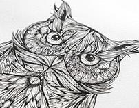 GC Owl