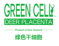 GREEN CELL Brochure Design
