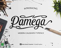 Pamega Script Font ( FREE )