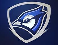 Mighty Blue Jays