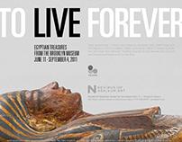 Egyptian Treasures - Nevada Museum of Art