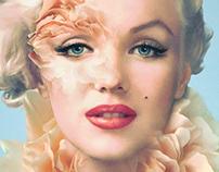 Marilyn Monroe —ICONS