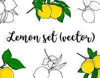 Lemon Illustration set