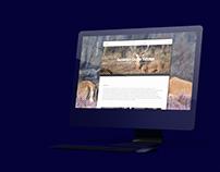 Rebranding 2Brothers | Interactive website