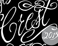 2015 St Lou Fringe VIP Crest Badge