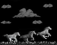 Myth of the Wild Horses