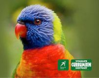 Currumbin Wildlife Sanctuary - General Store Signage