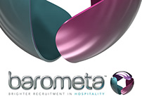 Barometa Brand Identity